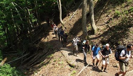 Hiking /Trekking